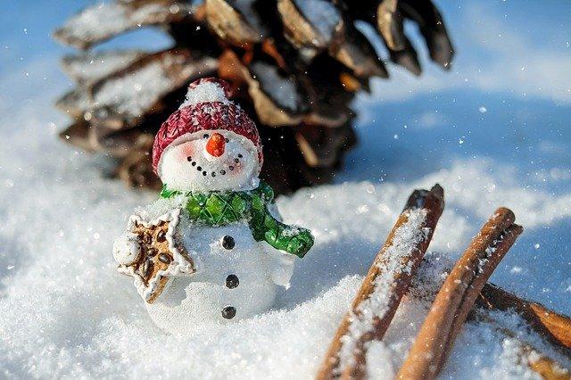 5 activités à faire au Québec lors d'un voyage en hiver